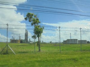 This is a photo of the perimeter fence of the Petrotrin Oil and Gas Company. We had to gain access to the plant in order to visit the Pointe-a-Pierre Wildfowl Trust