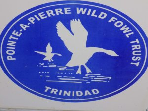 This photo shows the The Pointe-a-Pierre Wildfowl Trust's logo, a blue circle with the wording in white and an outline image of a duck landing in water.