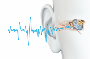 Happy Ears Hearing Tinnitus Evaluation