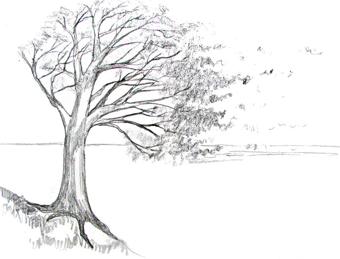 Cartoon Blowing Tree Branches