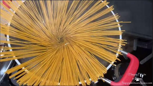 spaghetti noodles raw in pot
