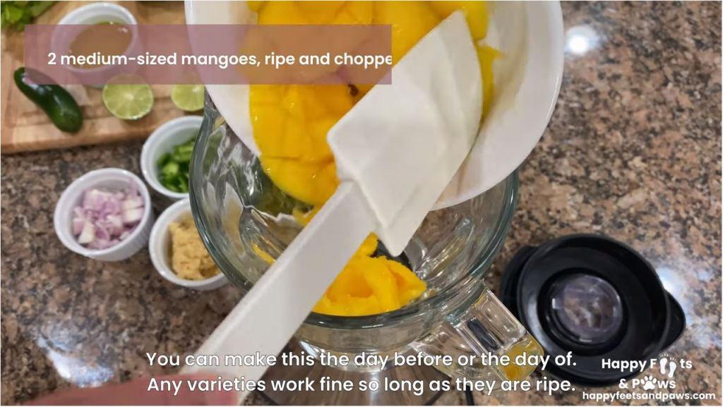 Putting mangos in a blender for mango salsa recipe