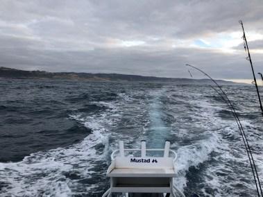 happy-fisherman-at-apollo-bay
