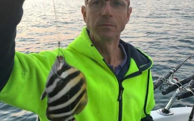 2019 March 10th fishing Portarlington