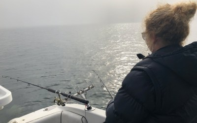 Quick Video of 23rd June – foggy day – Squid