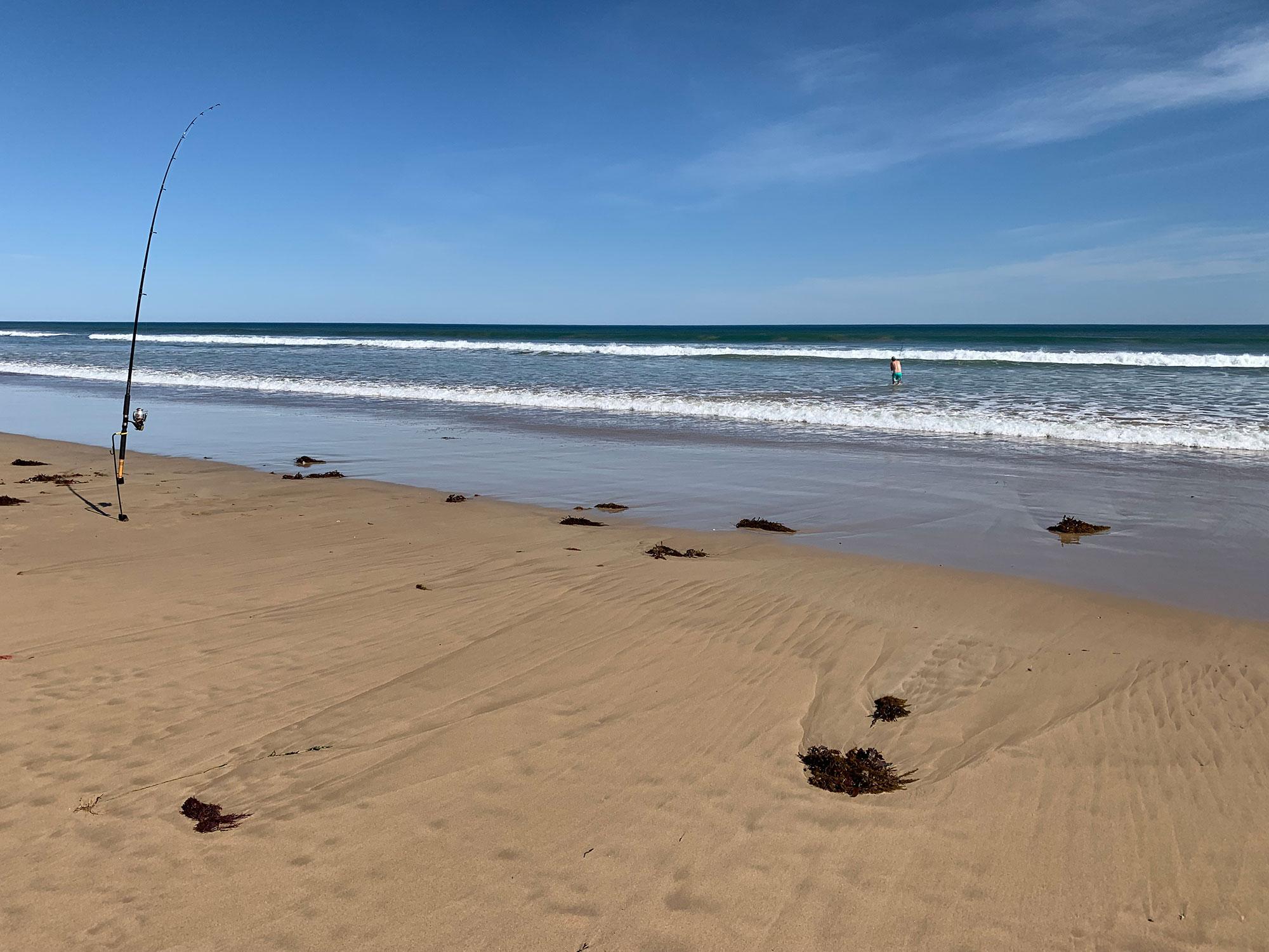 happy-fisherman-surf-fishing-barwon-heads