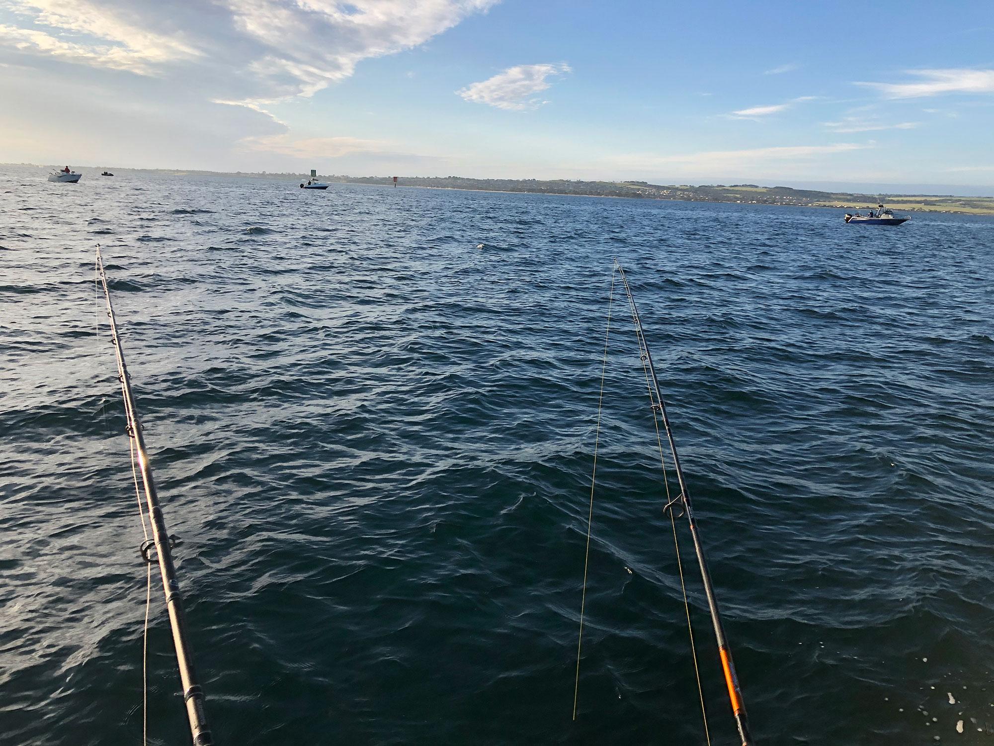 happy fisherman fishing port-phillip-bay