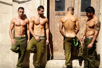 Image result for gay israel