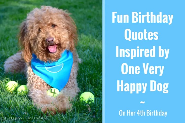 """Red goldendoodle dog wearing a dog bandana and sitting on green grass with four dog balls and title """"Fun Birthday Quotes Inspired by One Very Happy Dog On Her Fourth Birthday"""