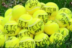 pile of yellow tennis balls with fetch joy printed on them as a gift ideas for dog owners