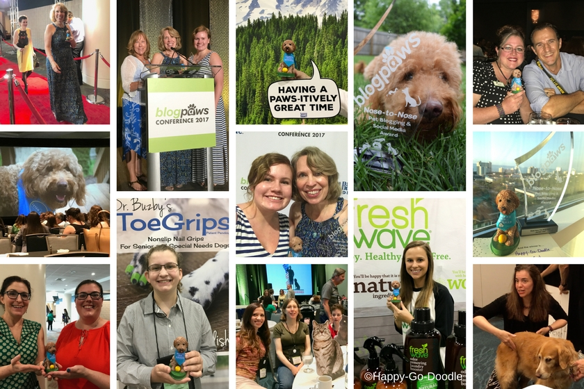 Collage of photos from BlogPaws 2017 conference including Happy-Go-Doodle