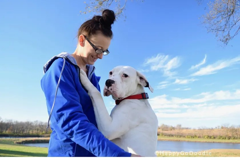 Dog in training Bosco and trainer Bella at Warriors' Best Friend site