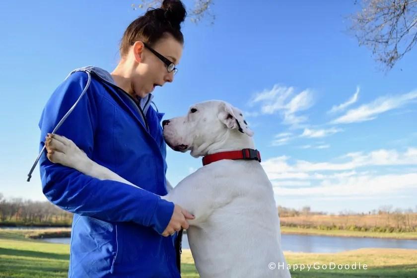 Dog in training Bosco surprises trainer Bella at Warriors' Best Friend location