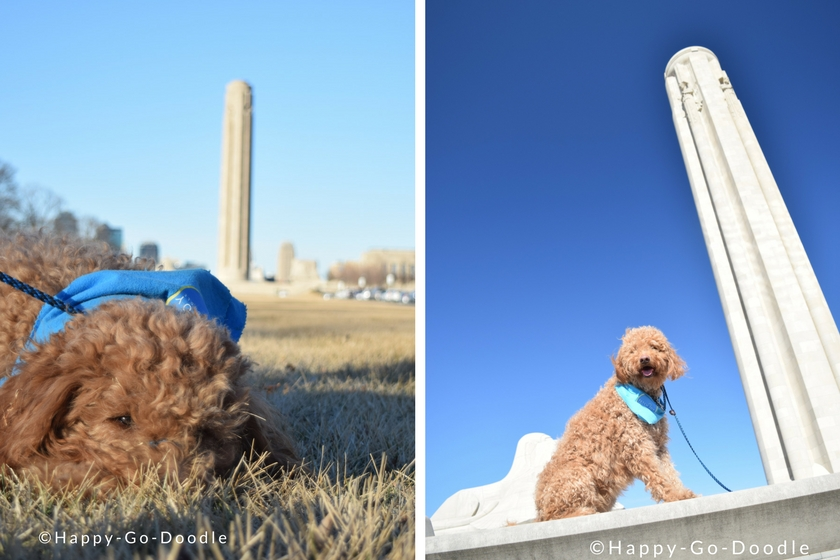 Kansas City's World War 1 Museum with Red goldendoodle dog in picture
