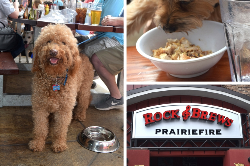 Collage of dog-friendly Kansas City restaurant called Rock 'n' Brews