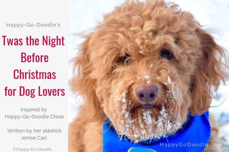 red goldendoodle dog and title twas the night before chriistmas for dog lovers