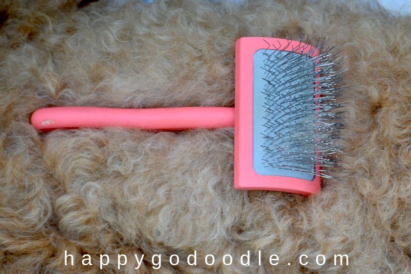 photo slicker brush as the best brush for goldendoodle