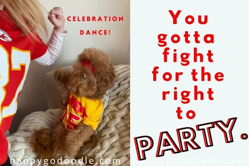 goldendoodle dog wearing mahomie shirt and dancing