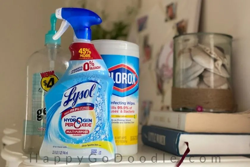 lysol, clorox wipes, and almost empty germ-x containers as part of a dog mom's quarantine life. photo