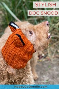 dog wearing knit head wear and title adorable dog snood, photo