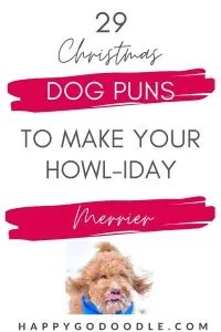 29 Christmas Dog Puns to Make Your Howl-iday Merrier lettering