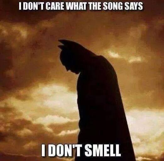Jingle Bells, Batman smells...
