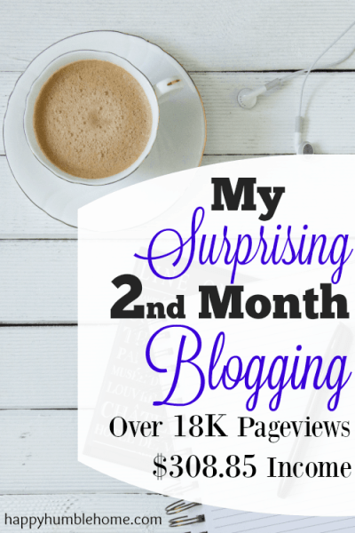 My Surprising Second Month Blogging - How I got Over 18K Pageviews and Over $300 Income in my 2nd month blogging!