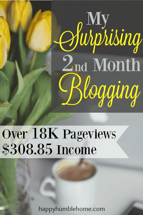 My Surprising 2nd Month Blogging - Over 18K Pageviews, $308.85 Income. How you can do this too!