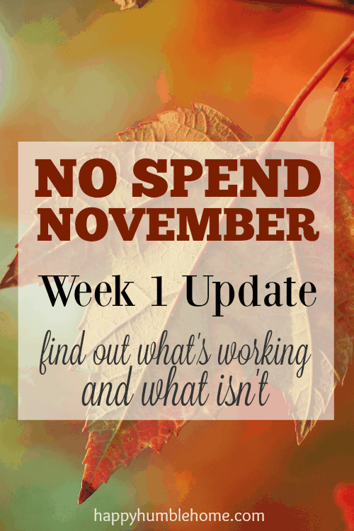 No Spend November Week 1 Update: what's working and what isn't -- This is such a great idea to get money saved up for the holidays! I love these ideas! I'm saving so much money by doing this!! You have to try it!
