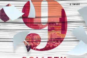 November 9 by Colleen Hoover Review: Hey Soulmate…Let's Only Meet Once A Year