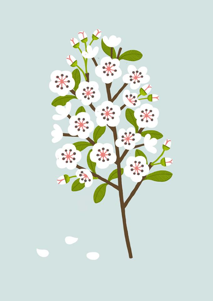 Sarah Abbott Blossom