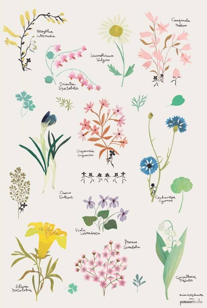 tinou-le-joli-senoville-poster-botanic