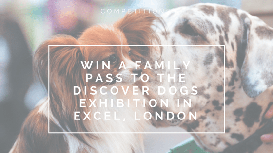 Win a family pass to the Discover Dogs Exhibition in Excel, London