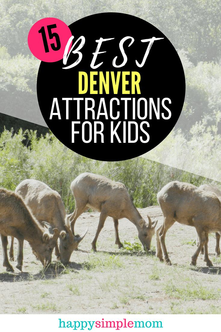 15 Best Denver Attractions for Kids