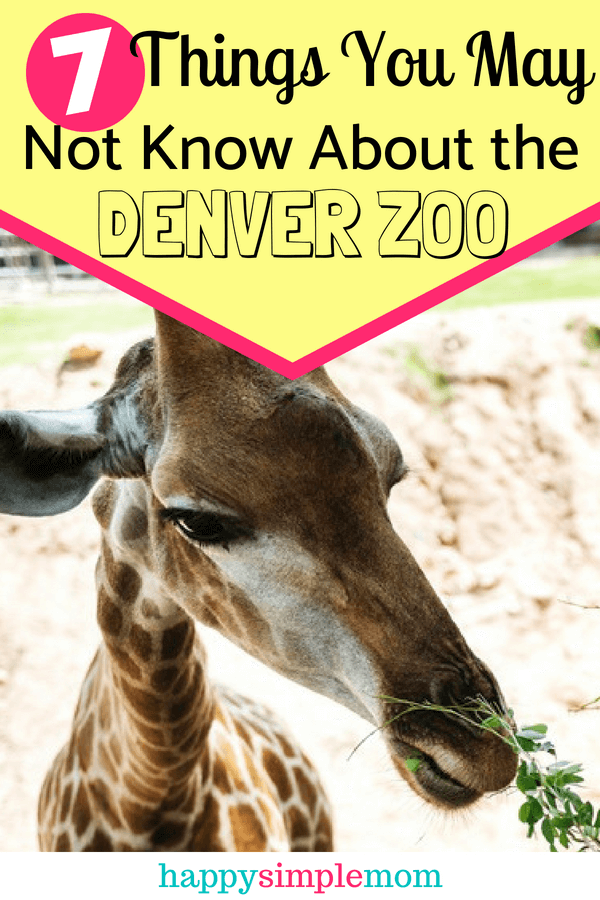 7 Things You May Not Know About the Denver Zoo