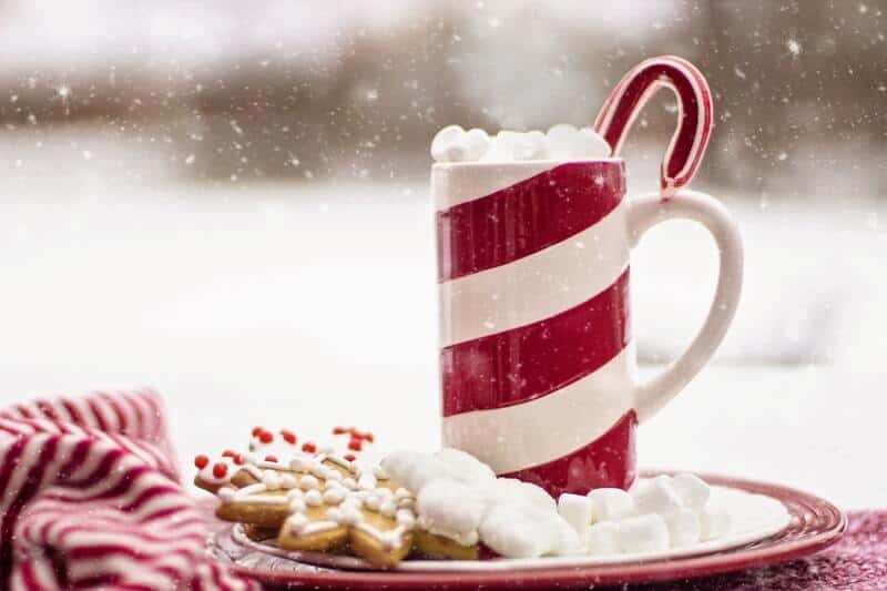 Hot coco with Christmas cookies in the snow.