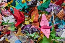 2015_cranes