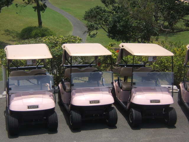Pink gold carts in Bermuda