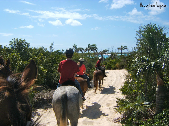 Riding horses around the island