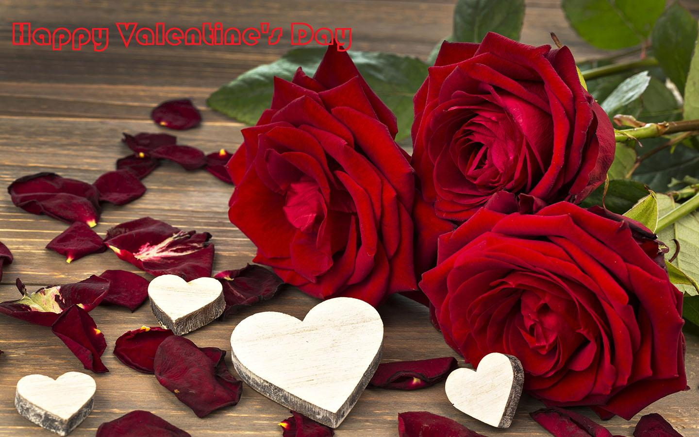 Valentines Day Romantic Red Roses HD Wallpapers Free