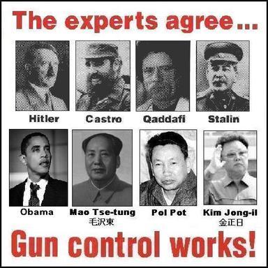 gun_control_works21.jpg