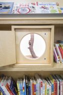A photograph of a special display in the story place which opens to reveal a mouse climbing a branch