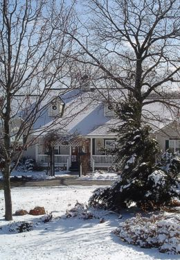 House surrounded by snowy trees and yard