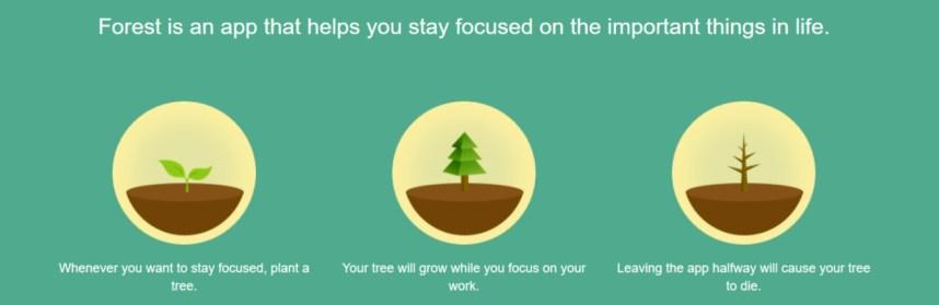 Productiviteit app Forest