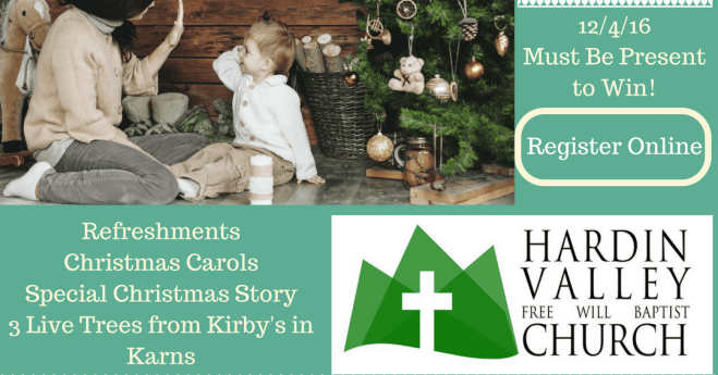 2016 Christmas Tree Giveaway