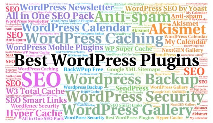 Best WordPress Plugin Image