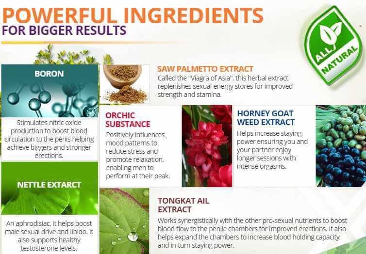 Ingredients in Zyntix Male enhancement pills