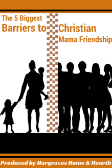 Barriers to Christian Mama Friendship