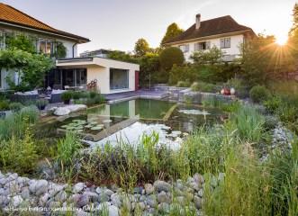 Schwimmteich in der Totale, Bade-Oase im Hausgarten in gemütlichem Wohnquartier
