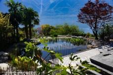 mediterraner Garten mit Schwimmteich, Palmen und Blick über den Lago Maggiore
